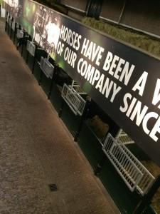 Heineken Atları