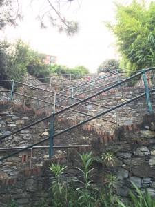 Köye Çıkan Merdivenler