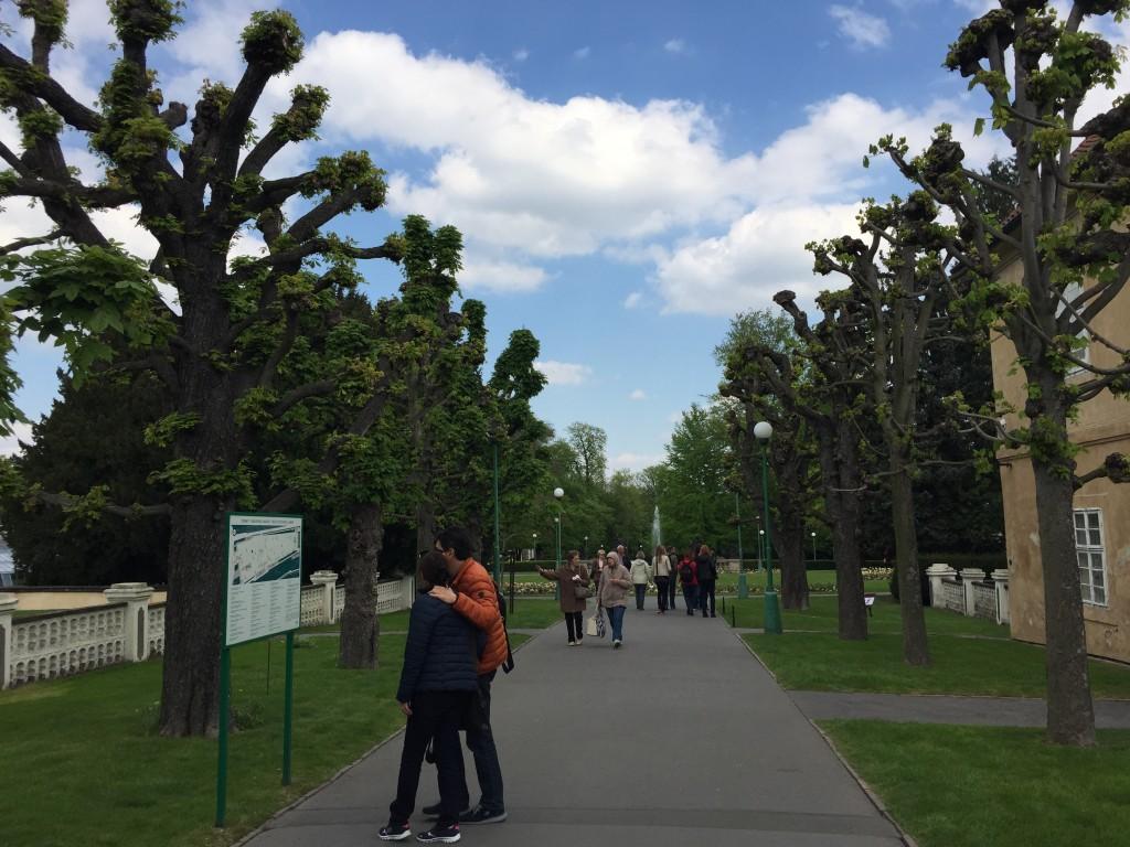 Belvedere Bahçesi