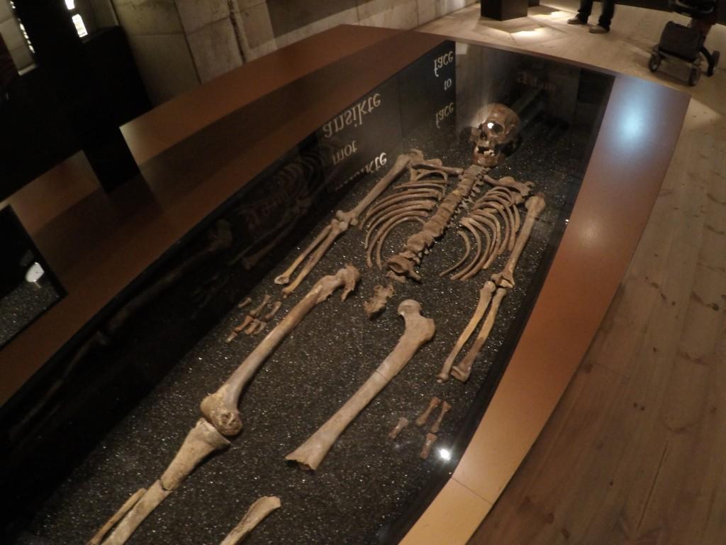 Gemiden çıkarılan kemikler